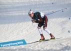 """Bikše """"Tour de Ski"""" sprinta kvalifikācijā ieņem 48. vietu"""
