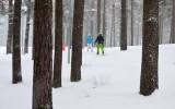 Foto: Bauda slēpot Mežaparkā