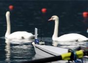 Bračka/Lange sestajā vietā junioru airēšanas Eiropas čempionātā