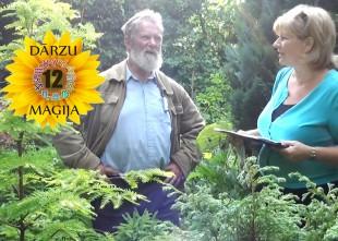 Video: 12 DĀRZU MAĢIJA. 6. sērija - Jaunavas dārzs