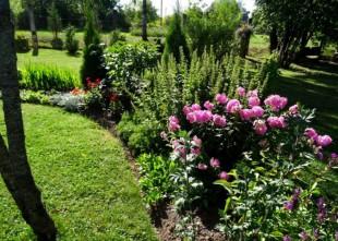Video: Kas īpašs Strēlnieka dārzā? 12 dārzu maģija