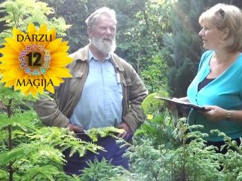 Video: Kas īpašs Jaunavas dārzā? 12 DĀRZU MAĢIJA