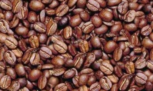 Tests ar kafijas pupiņām