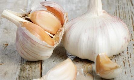 Ķiploku receptes pret dažādām vainām, kaitēm un slimībām